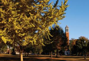 Photography courtesy of The University of Alabama