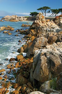 The rocky coastline, Pacific Grove, California.
