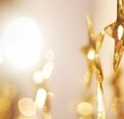2019 Collegiate Recovery Award Winners